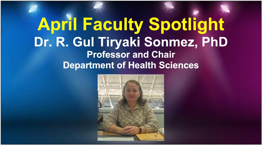 Faculty Spotlight